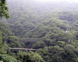 登山鉄道より。
