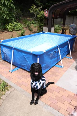 プール建設④