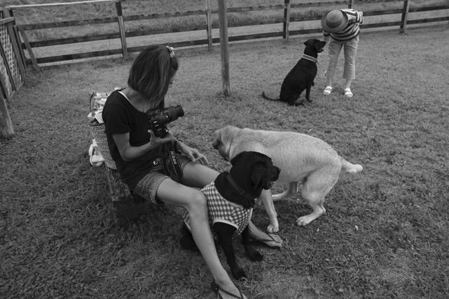 34yuukiちゃんと犬たち