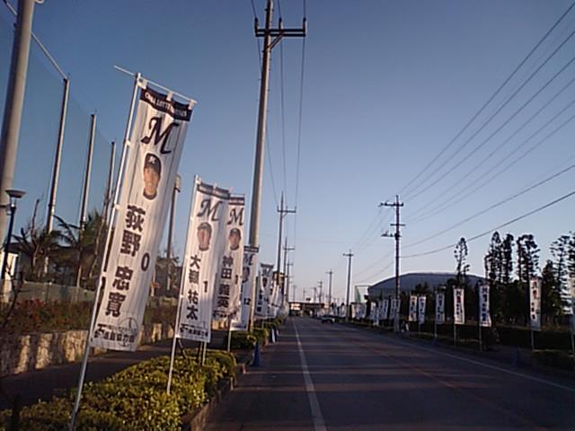 MA320452.jpg