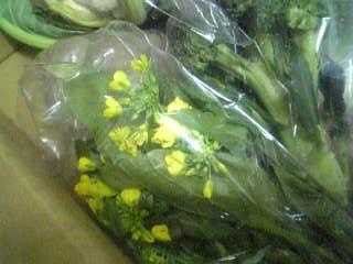 ベテラン野菜オータムポエム