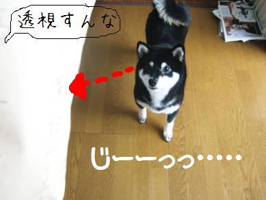 20070903_DSCF2476.jpg
