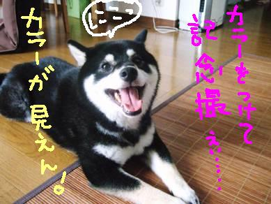 20070903_DSCF2497.jpg