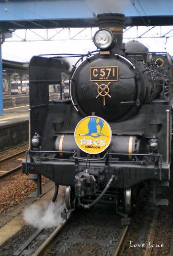 20090603-2.jpg