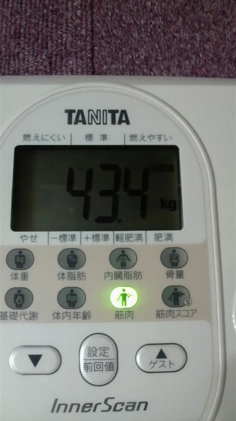 P1070003.jpg