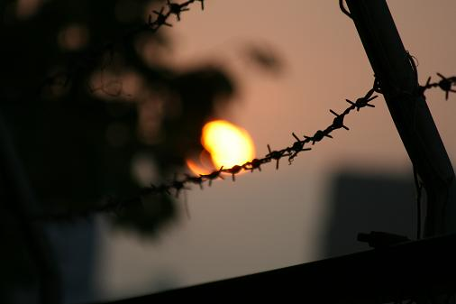 sunset1103.jpg
