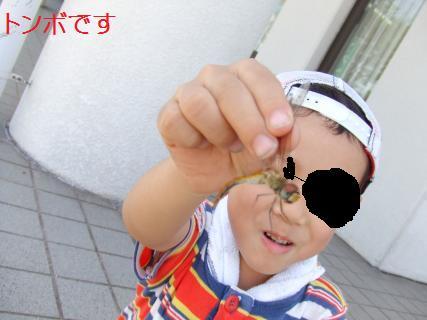 kenmori9
