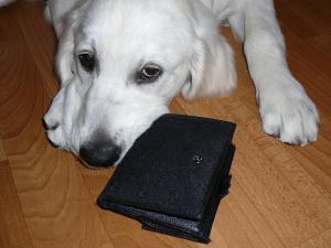 20090407財布