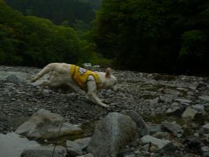 20090504キャンプ川