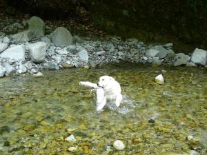 20090504キャンプ川2