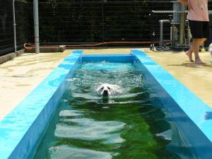 20090808深プール