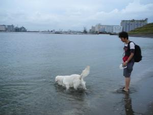 20090809海3