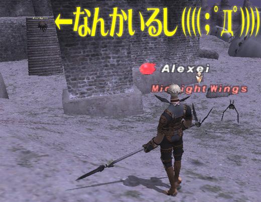 ale0220_7.jpg
