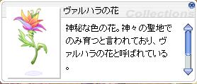 ふらわー(*´Д`*)