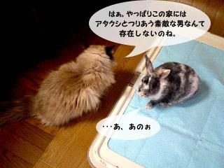 yonkoma1_2.jpg
