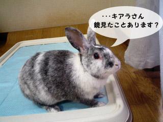 yonkoma1_3.jpg