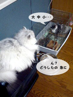 yonkoma3_1.jpg
