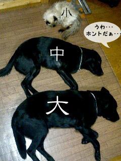 yonkoma3_3.jpg