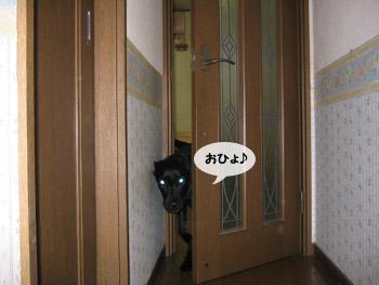 yonkoma4_3.jpg