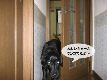 yonkoma4_4.jpg