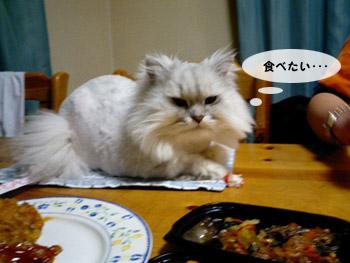 yonkoma6_1.jpg