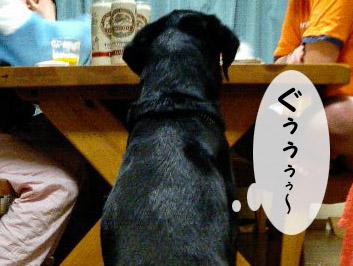 yonkoma6_3.jpg