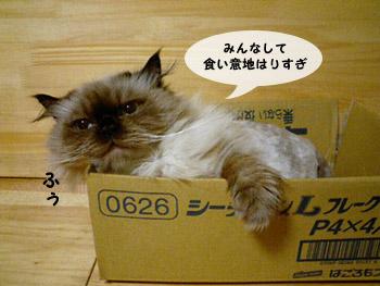 yonkoma6_4.jpg