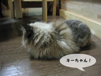 yonkoma7_1.jpg