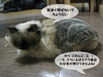 yonkoma7_2.jpg