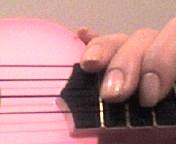 アネラのツメAnella's-nail