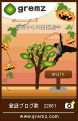 グリムス56鳥4