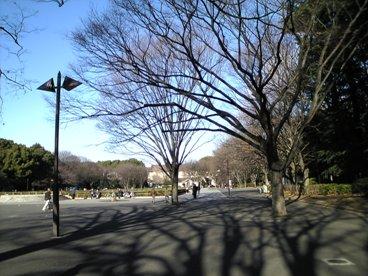 021-1上野公園