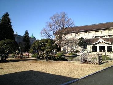 024-1上野公園