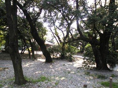 128-1庭園1