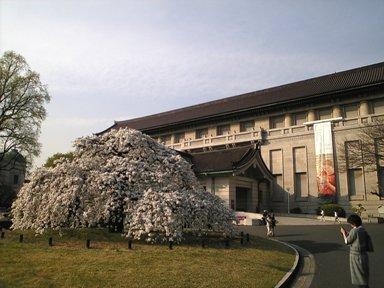 143-1博物館1
