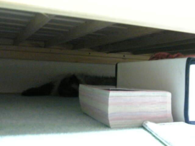 ベッドの下3