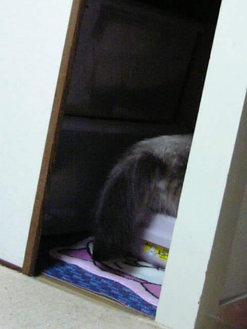 ・・・トイレ