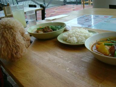 DSCF2248-curry.jpg