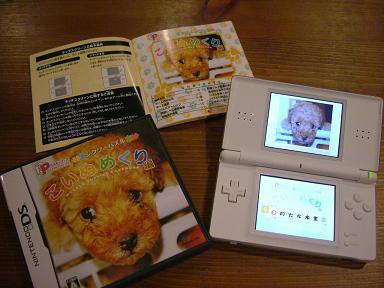 DSCF2330-game.jpg