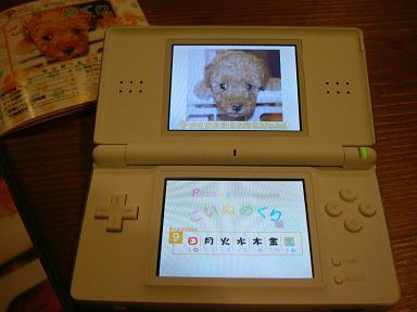 DSCF2334-gamen.jpg