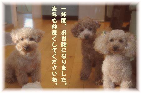 DSC_6040-aisatu2.jpg