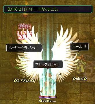 20061229131615.jpg