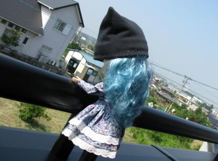 IMG_3499 (3)
