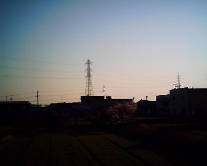 画像 016 (2)