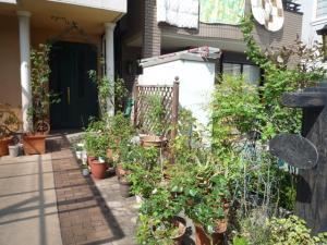 2009鶴見ガーデンショー6