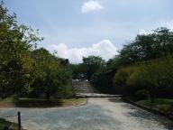 福岡城跡#11