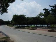 大濠公園#1
