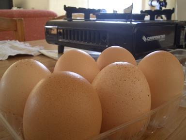 Free Range Eggs2