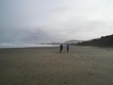 Muriwai Beach 4