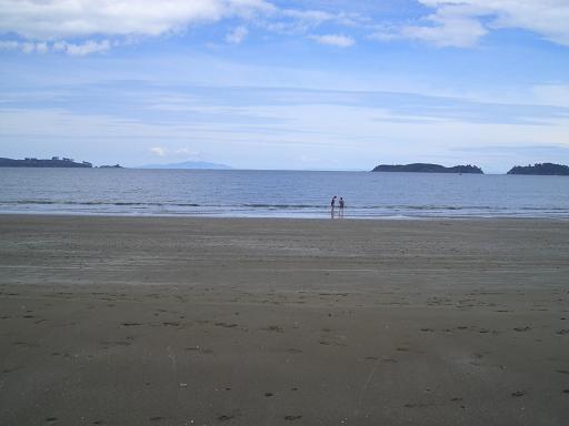 Martin Bay